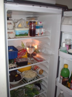 top of fridge
